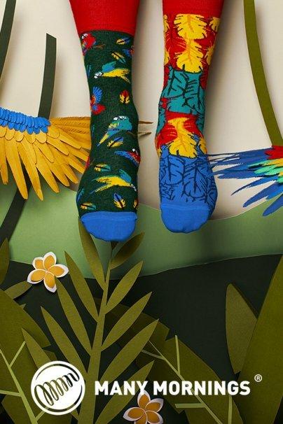 skarpetki Barevné ponožky Paradise Parrot - Many Mornings